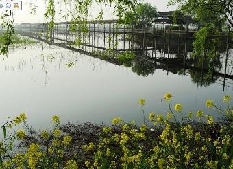 仙桃怎么到洪湖旅游风景区