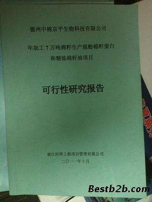 关于项目,立项可行性研究报告的代写