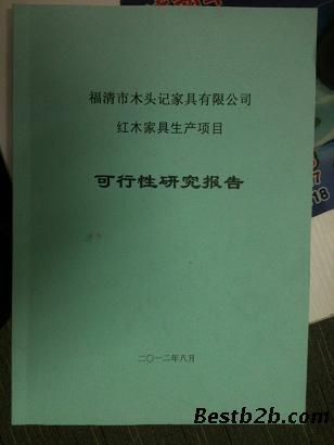 可行性研究报告模板,可行性分析报告格式