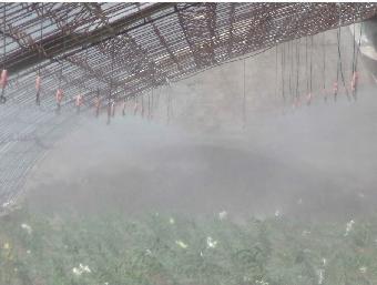 蔬菜苗圃温室大棚喷雾降温加湿喷药设备