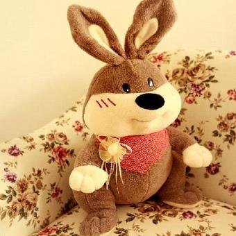 兔子公仔彼得小兔子布娃娃可做生日礼物