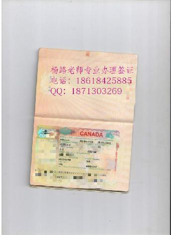 办理加拿大旅游签证多少钱?如果拒签了还能再