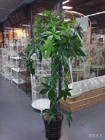 辫子发财树;; 北京仿真绿植仿真发财树价格13520035340;