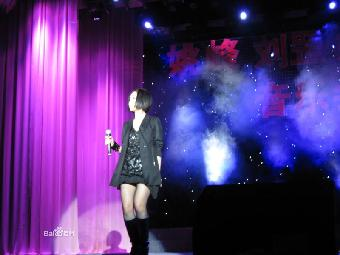 """与徐子崴合唱    《月亮代表我的心》,《好人好梦》:参加央视四套"""""""
