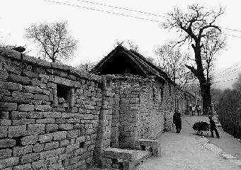 淄川区峨庄乡土泉村山庄依山傍水风景秀丽村内有千年流苏树千年古楼