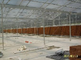 铁皮石斛种植温室蝴蝶兰种植温室蔬菜育苗智能温室生态温室大棚养殖