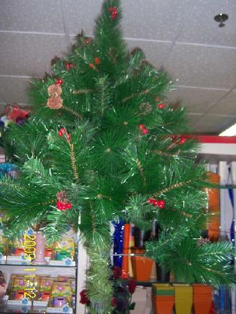 延庆大榆树销售大型圣诞树