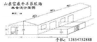 标准化羊舍设计图:北京,广东 ,福建养羊专业找山东富康养殖场设计图片