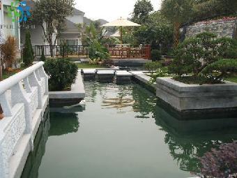 别墅鱼池设计,鱼池过滤设计建造工程