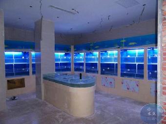 超市海鲜池,海水鱼缸,淡水鱼缸,鱼缸维护,海鲜制冷机安装 ,循环水系统