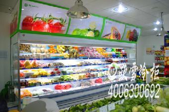 南山区水果保鲜冰箱品牌
