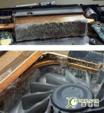南京戴尔笔记本电脑风扇除尘